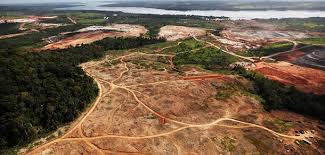 desmatamento versus água