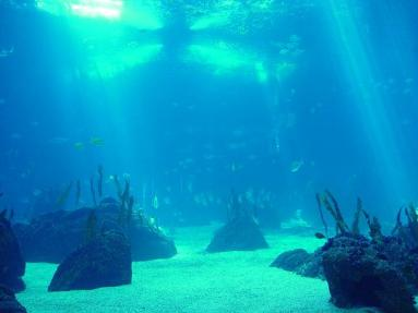 oceano-atlántico-pacífico