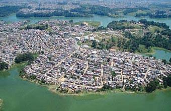 urbanização e biodiversidade