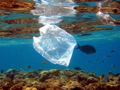 lixo no mar3