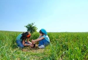 sustentabilidade crianças