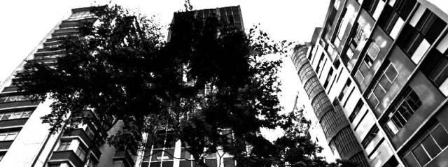 arquitetura e cidade3