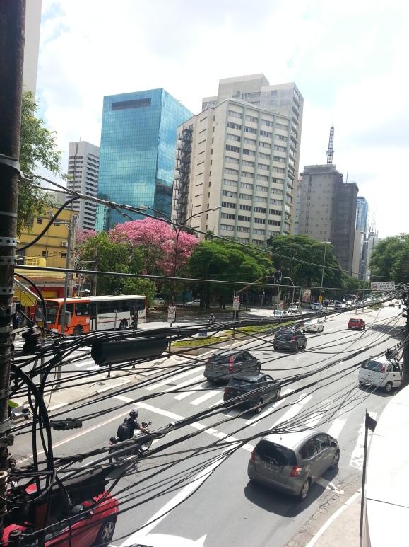 av paulista9