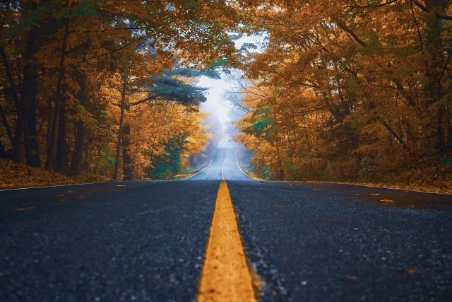 autumn-foto Pixabay