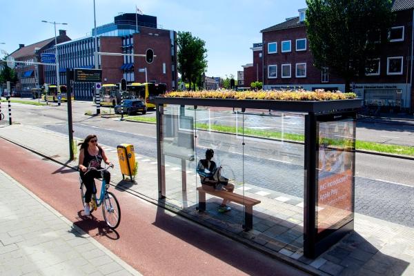 Utrecht pontos de onibus para abelhas
